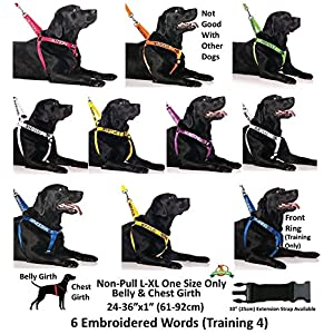 ADOPT ME Yellow Color Coded L-XL Non-pull Dog Harness (New Home Needed) Donate To Your Local Charity