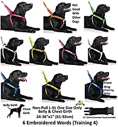 NERVOUS Yellow Color Coded 4 Foot Padded Dog Leash (Give Me Space) PREVENTS Accidents By Warning Others of Your Dog in Advance