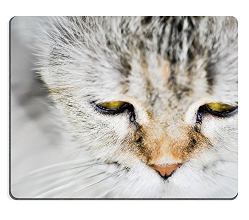 Luxlady Mouse Pad Natural Rubber Mousepad IMAGE ID: 34676861 cat face be absent minded cat (Absent Drink)