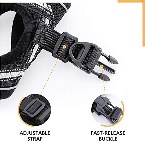 rabbitgoo Cat Harness and Leash Set for Walking Escape Proof, Adjustable Soft Kittens Vest with Reflective Strip for Cats, Step-in Comfortable Outdoor Vest 26