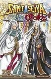 Saint Seiya - Les Chevaliers du Zodiaque - The Lost Canvas - La Légende d'Hadès - Chronicles - tome 16 (16)