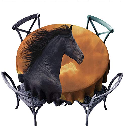 Animal Decor Circle Tablecloth Portrait of Galloping Frisian Horse with Warm Hot Sun Rays Intensity Honor Grace Theme Flannel Tablecloth (Round, 36 Inch, Black Orange)