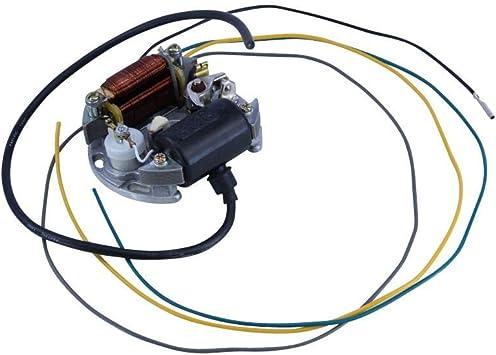 Zündapp Lichtmaschine 6v 15w Für Cs C Gts Ks 25 50 Lichtmaschinenankerplatte Lima Auto