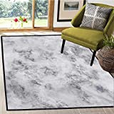 Marble, Bath Mats for Floors, Granite Surface Pattern with Stormy Details Natural Mineral Formation Print, Bath Mat for tub Bathroom Mat 6x9 Ft Pale Grey Dust