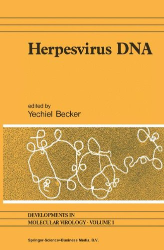 Herpesvirus DNA: Recent studies on the organization of viral genomes, mRNA transcription, DNA replication, defective DNA