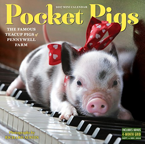 Pocket Pigs Mini Wall Calendar 2017: The Famous Teacup Pigs of Pennywell (A Cup Of Christmas Tea)