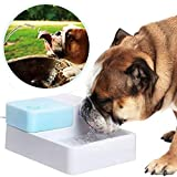 JIN Pet Water Fountain Dog Cat Automatic Electric Drinking Bowl With LED Light Automatic Fresh Water Flow With 2 Filters