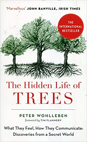 Book's Cover of The Hidden Life of Trees: What They Feel, How They Communicate (Inglés) Tapa blanda – 24 agosto 2017