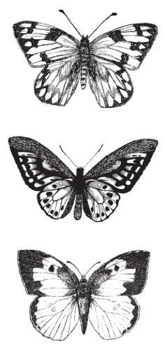 The 8 best butterflies stamps