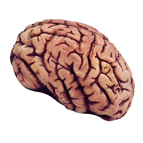 Make Haunted House Props (Soft Plastic Bloody Brain Haunted House Horror Halloween Prop)