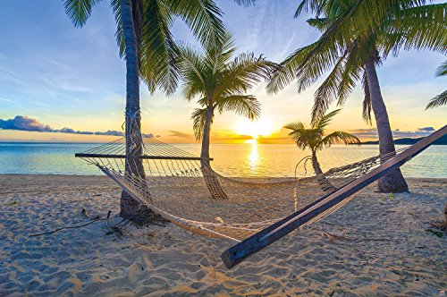 Poster Hammock at Palm Beach before sunset wall picture decoration Sun Caribbean holiday summer beach sea palm trees wall decor by GREAT ART 55 Inch x 394 Inch140 cm x 100 cm