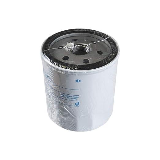 OEM - Noria 5021068 X 1 filtro para cortacésped de la noria ...