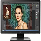 HP D2W67A8#ABA Business ProDisplay P19A Monitor