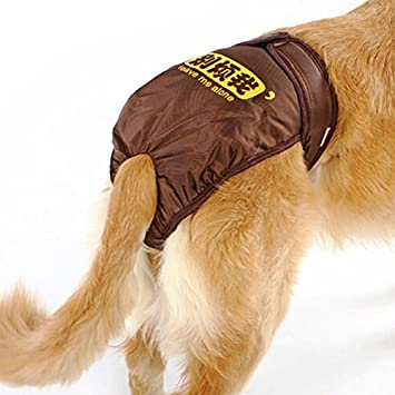 UEETEK Pañales de perro reutilizables Pantalones sanitarios Ropa interior de higiene con las bandas del vientre