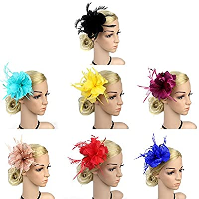 DJHbuy Fascinator Feather Mesh Hair Clip Hat Wedding Bridal Party Headpiece for Women