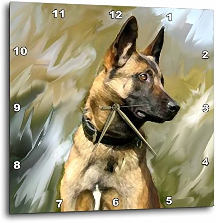 3dRose LLC Belgian Malinois 10 by 10-Inch Wall Clock