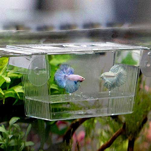 Water Hep Fish Bowl Aquarium Transparent Double Bowl Fighting Fish Mini House Incubator Box for Fry Isolation Hatchery Reptile Cage Turtle House]()