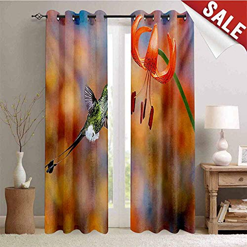 Hummingbird Window Curtain Fabric The Booted Racket Tail Feeding Nectar from Tiger Lily Blur Background Photo Drapes for Living Room W108 x L96 Inch Orange Green (Drapes Lily Tiger)