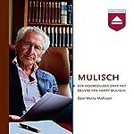 Mulisch: Een hoorcollege over het oeuvre van Harry Mulisch | Marita Mathijsen
