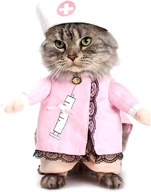 Vestido de Enfermera para Gato, Talla M, Divertido, Idea de Disfraz para Amigos y Animales, Regalo para Mascotas: Amazon.es: Productos para mascotas
