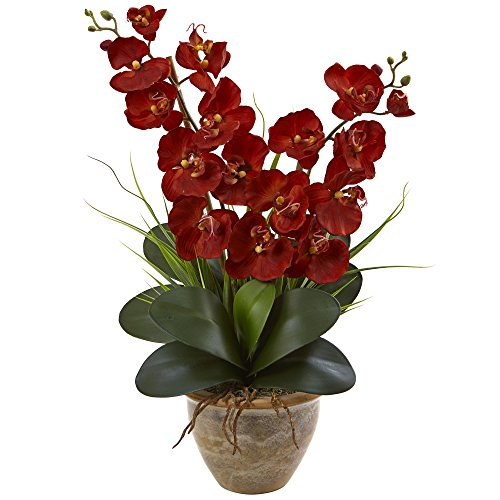 Double Phalaenopsis Silk Orchid - Nearly Natural Double Phalaenopsis Orchid Arrangement, Autumn