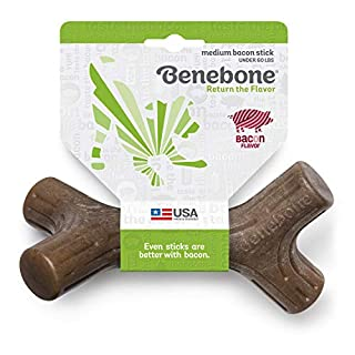 Benebone Bacon Stick Real Wood Durable Dog Chew Toy, Made in USA, Medium