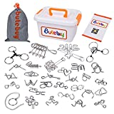 Sea Team 30-Pack Assorted Brain Teasers Metal Wire IQ Puzzles with Plastic Box Package Great Educational Intelligence Toys for Adult Children and Student