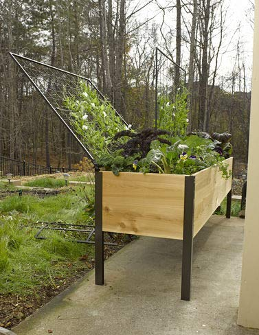 Amazoncom Gardeners Supply Company Elevated Cedar Planter Box