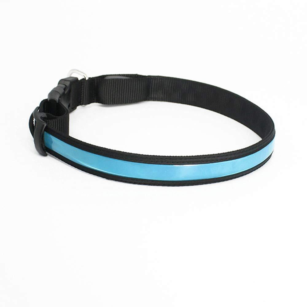 bluee M bluee M USB Rechargeable Light Pet Collar Medium and Small Dog Teddy golden Retriever Anti-Lost Pet Light Collar (color   bluee, Size   M)