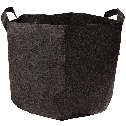 Root Pouch Degradable Pot Bundle of 10, 25 Gallon - 4 - 5 Year