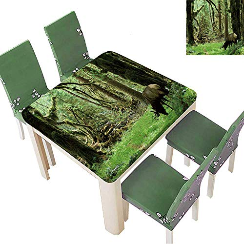 Printsonne Indoor/Outdoor Polyester Tablecloth Roosevelt elk in Olympic National Park,Washington Wedding Party 50 x 50 Inch (Elastic Edge)]()