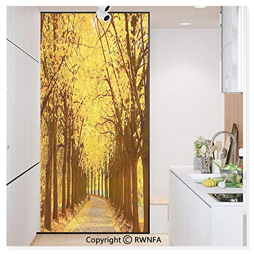 Linden Window Treatments - Decorative Privacy Window Film Botanical Garden Autumn Leaves in The Fall Linden Alley in Kiev Ukraine Image No-Glue Self Static Cling for Home Bedroom Bathroom Kitchen Office,Yellow Brown