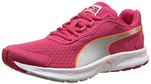 Puma Descendant v3 Wn, Damen Laufschuhe, Pink (rose red-puma silver-fluo peach 06), 39 EU (6 Damen UK)