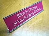 Btch In Charge Engraved 2x8 Pink Desk Sign with Silver Metal Desk Holder | Office Sign Name Plate Bitch Gag Gift Funny Girl Power Boss Joke