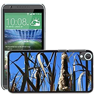 Hot Style Cell Phone PC Hard Case Cover // M00109930 Nature Field Autumn Rural Outdoor // HTC Desire 820