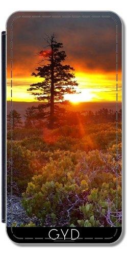 Leder Flip Case Tasche Hülle für Apple Iphone 7 Plus / 8 Plus - Sonnenuntergang Sonnenaufgang Urlaub Natur by WonderfulDreamPicture