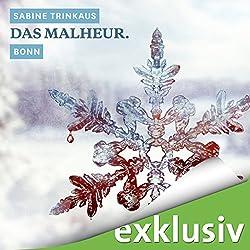 Das Malheur. Bonn (Winterkrimi)