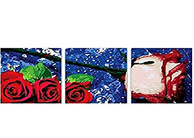 Pack of 3[Wooden Framed] Diy Oil Painting, Paint By Number Home Decor Wall Picture Value Gift Christmas Gift-Satellite flowers 20x20 inch