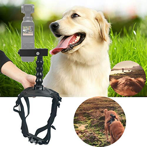 New!!Cindero Best Pet Fetch Dog Pet Chest Back Mount Strap Shoot Picture for DJI OSMO Pocket ()