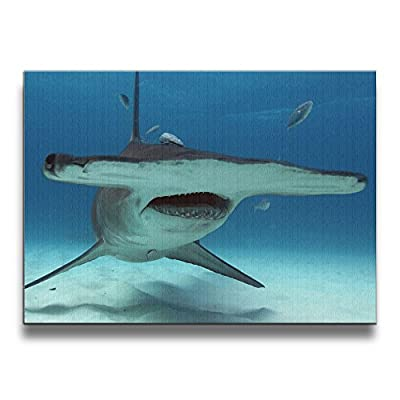 Martoo Art Hammerhead Sharks Thumb 16/20 Inch Framed Decorative Artwork Abstract Paintings On Canvas Wall Art Ready To Hang For Home Decoration Wall Decor Pictures For Living Room