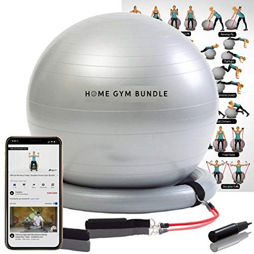 Home Gym Bundle Exercise Ball with Attachable 15lb Resistance Bands and Removable Stability Base – Full Body Fitness…