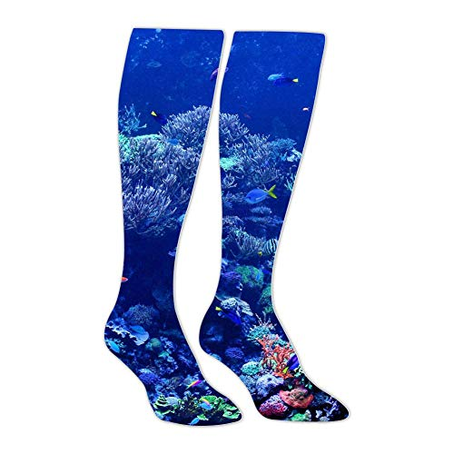 Knee High Stockings Coral Reefs Long Socks Sports Athletic for Man and Women