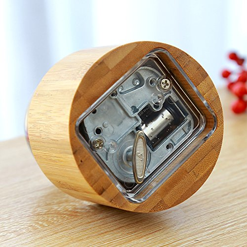 Mylifestyle Musical Box Real Specimens Dandelion Ball with Wood Base Music Box Gift for Christmas/Birthday/Valentine's Day,(Melody Happy Birthday to You) by Mylifestyle (Image #1)
