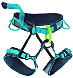 EDELRID - Jay II Climbing Harness, Slate/Icemint, Small