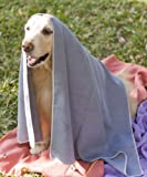 Mugzy's Charcoal Mutt Towels – 100% Microfiber Pet Towels make bath time a breeze! Super absorbent, fast drying, available in 5 colors, and built to last – 28″ x 50″, My Pet Supplies