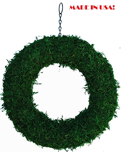 Moss Form Topiary (15