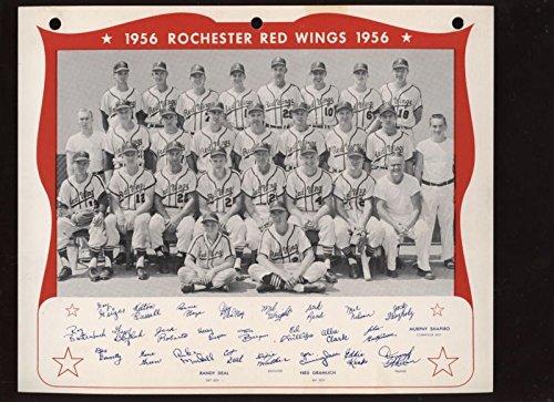 1956 Rochester Red Wings International League Baseball Team Photo Nrmt