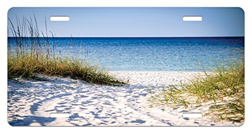 Lunarable Beach License Plate by, Path to Beach Clear Sky Bushes Grasses Windy Sunny Day Peaceful Gulf of Mexico, High Gloss Aluminum Novelty Plate, 5.88 L X 11.88 W Inches, Blue Green White
