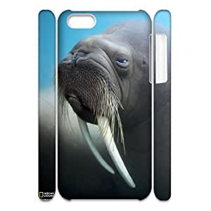 3D IPhone 5C Case, Girl Arctic Walrus Case for IPhone 5C {White}