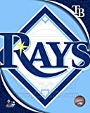 Tampa Bay Rays - Official Team Logo - MLB 8x10 Photo